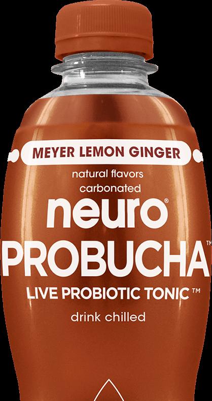 Neuro Probucha